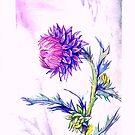 Thistle- Watercolor by FaerytaleWings