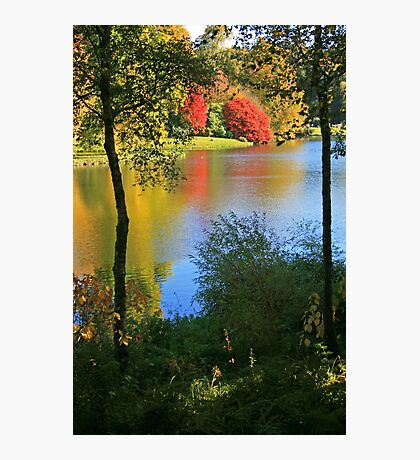 Autumn Colours in Wiltshire Photographic Print