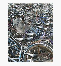 A Field of Bicycles Photographic Print