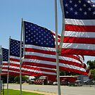 American Legion Flags by WildestArt