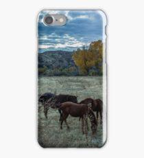 Horses Grazing iPhone Case/Skin