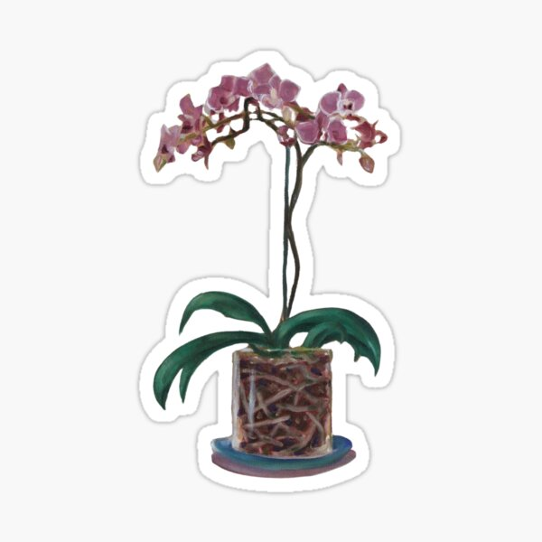 Orchid and Roots Sticker
