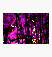 Purple Riot Photographic Print
