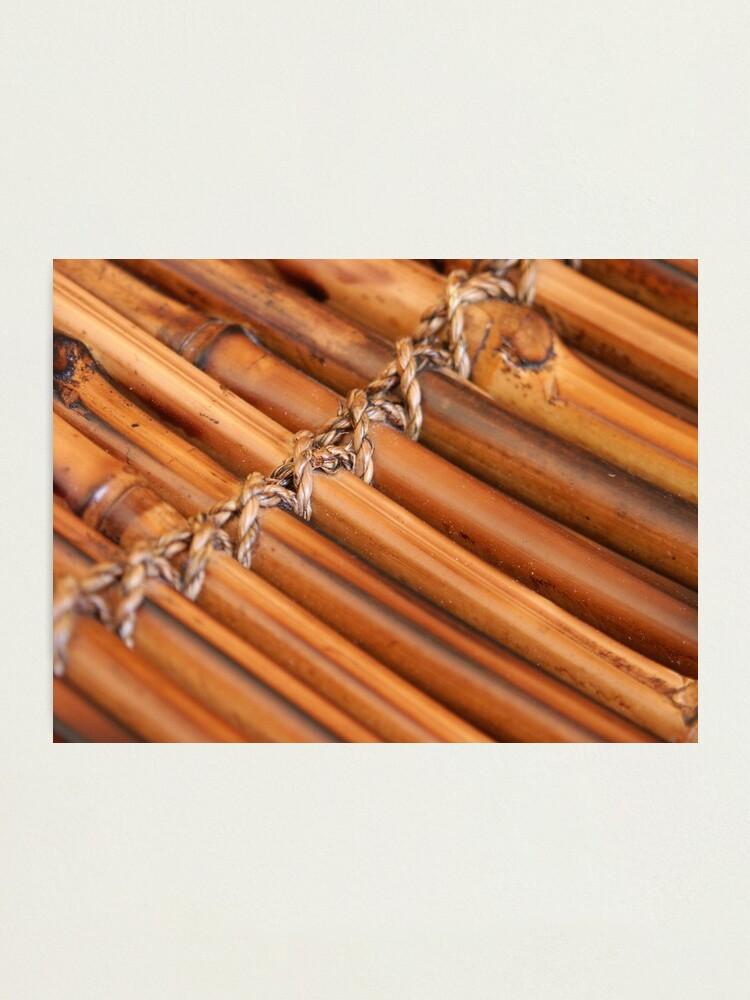 Alternate view of Bamboo Photographic Print