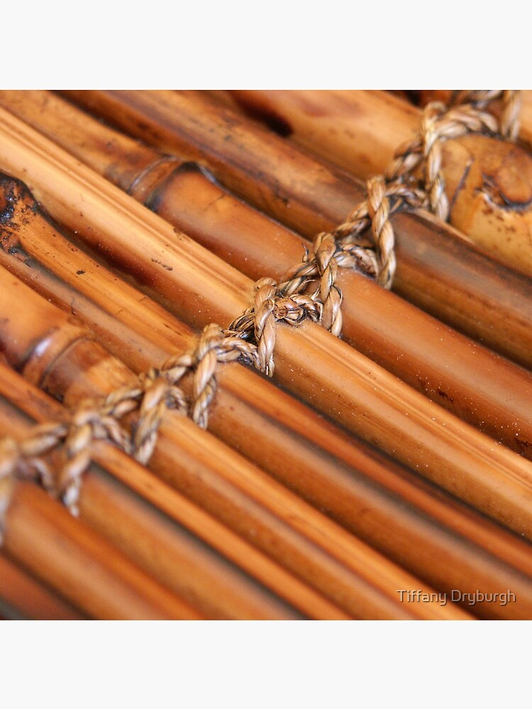 Bamboo by Tiffany