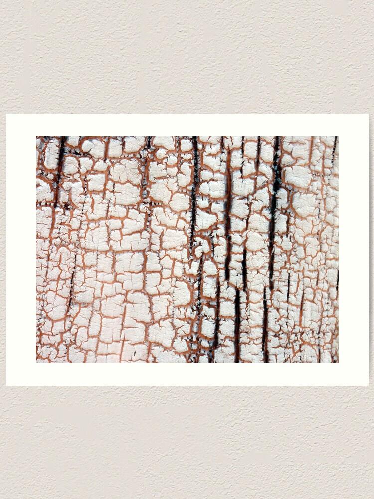 Alternate view of Crackling Art Print