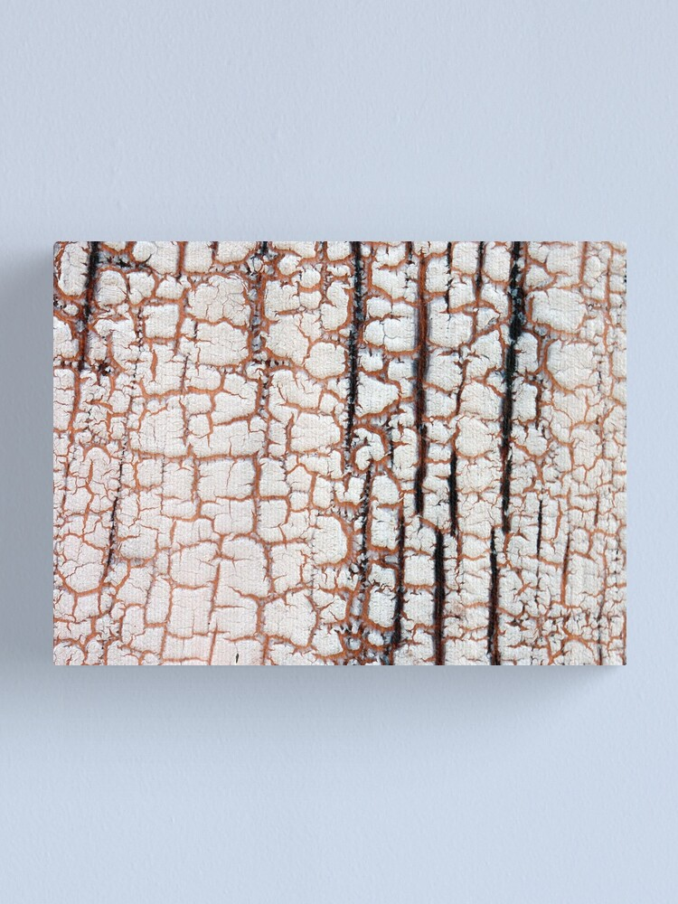 Alternate view of Crackling Canvas Print