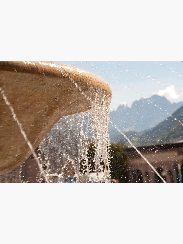 Fountain, Train Station Plaza,  Bolzano/Bozen by leemcintyre