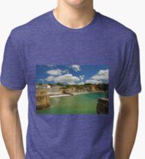 Charlestown Beach and Cliffs Tri-blend T-Shirt