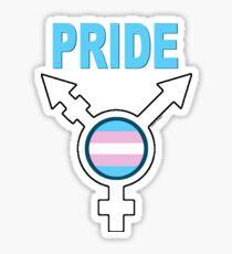 Transgendered Pride (for light colors) Sticker
