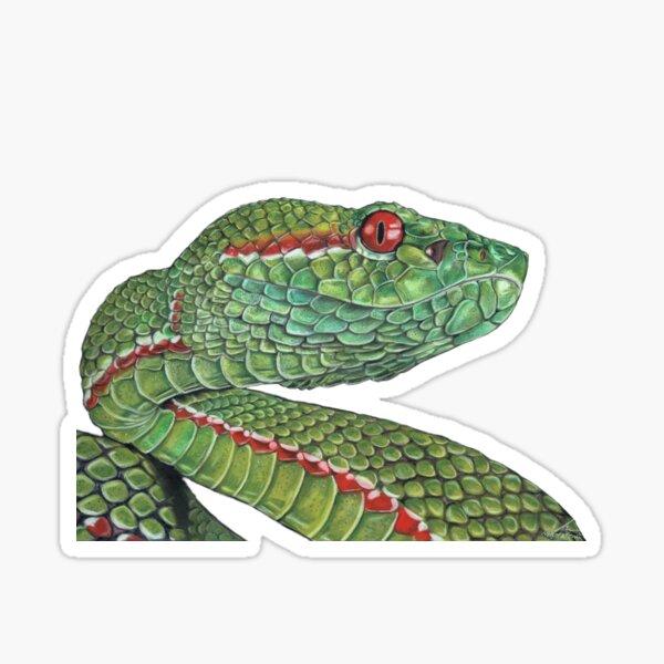 PitViper-be Snakey Sticker
