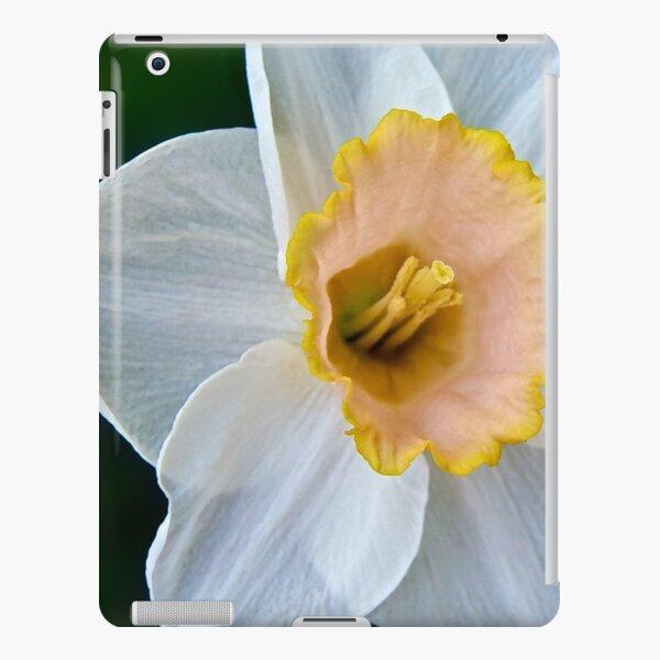 Salmon Daffodil iPad Snap Case