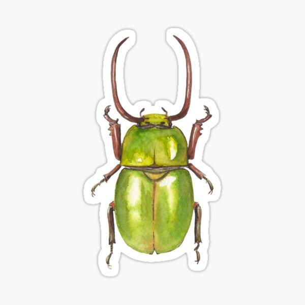 Insecte vert Sticker