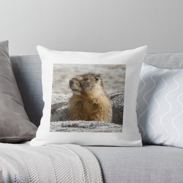 A marmot appears Throw Pillow