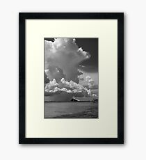 The  Black and white collection Framed Print