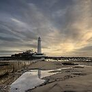 Morning at the Lighthouse by Anna Ridley
