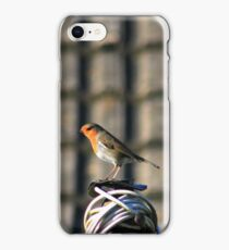 Robin on washing line iPhone Case/Skin