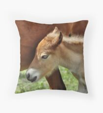 Protected Throw Pillow