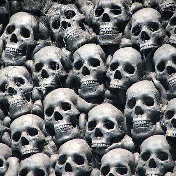 Skulls by teaguy
