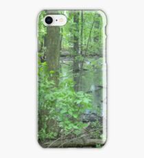 Detroit Swamp - Palmer Park iPhone Case/Skin