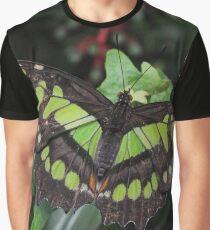 Siproeta stelenes Graphic T-Shirt