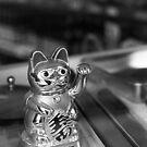 Chinese store cat - Martim Moniz by vssff