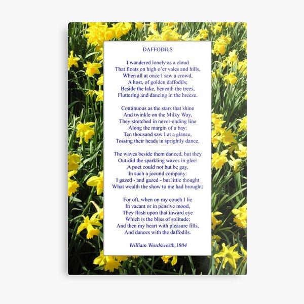 "Wordsworth's ""Daffodils"", especially good as a card. Metal Print"