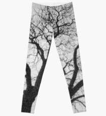 Bellwood's Tree Leggings