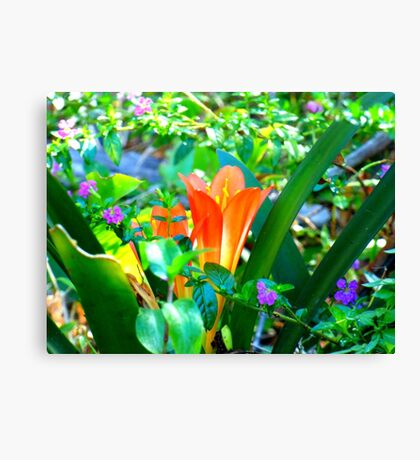 Spring has come . 2016 Clivea with friends .  Canvas Print