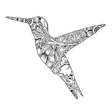 Floral Hummingbird by Movement
