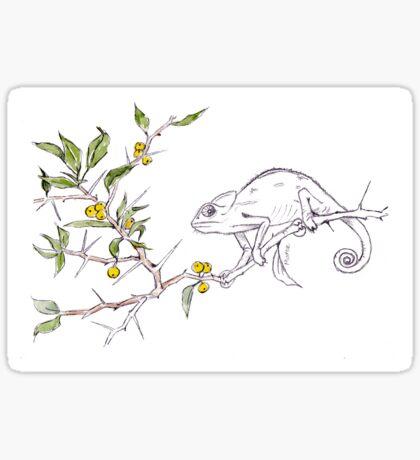 Kei-apple and a Chameleon - Botanical illustration Sticker