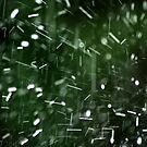 Heavy rain by Bluesrose