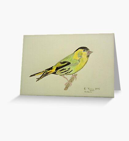 Siskin Drawing Greeting Card