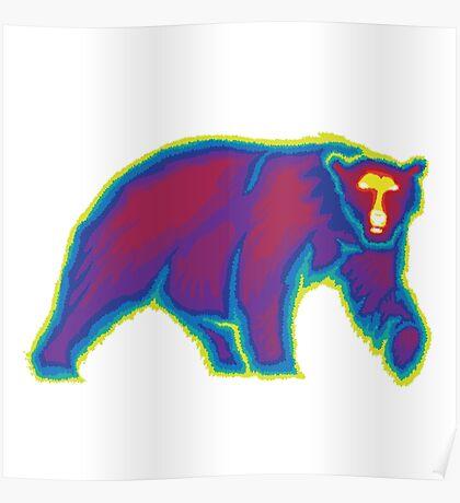 Heat Vision - Polar Bear Poster