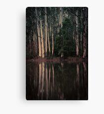 Sanatorium Lake Canvas Print
