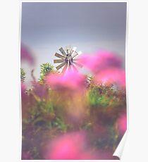 Rural Windmill Poster
