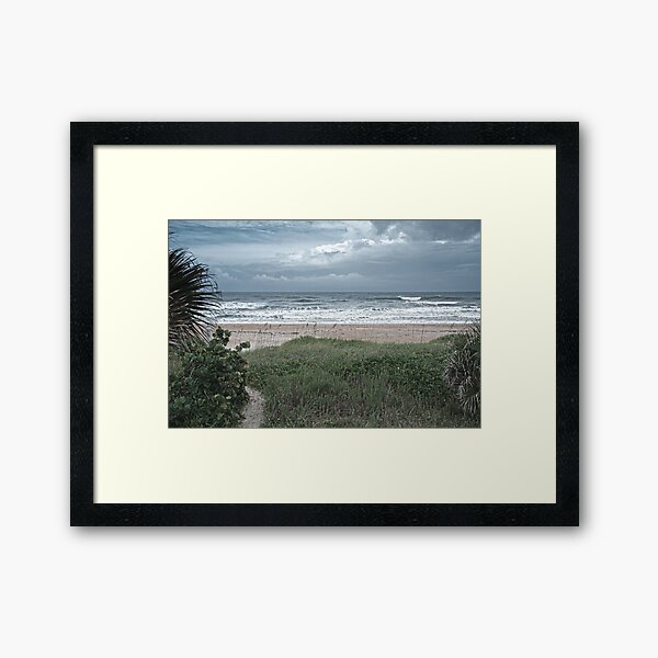 Flagler Beach Path Framed Art Print