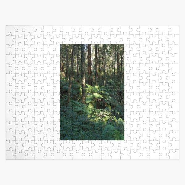 Sunlit Tree Fern Jigsaw Puzzle