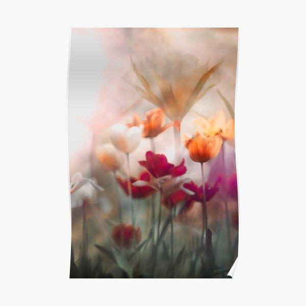 tulip dream Poster