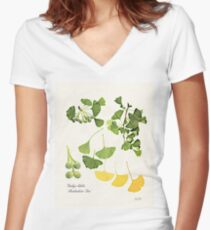 Ginkgo biloba botanical print Women's Fitted V-Neck T-Shirt