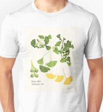 Ginkgo biloba botanical print Unisex T-Shirt