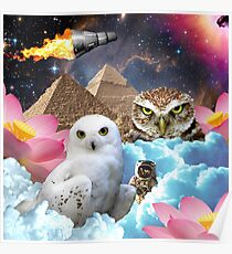 I Dream of Space Owls Poster