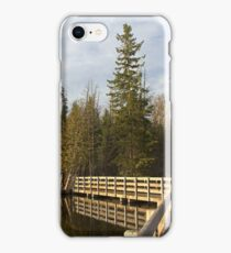Stony Swamp Walkway HDR iPhone Case/Skin