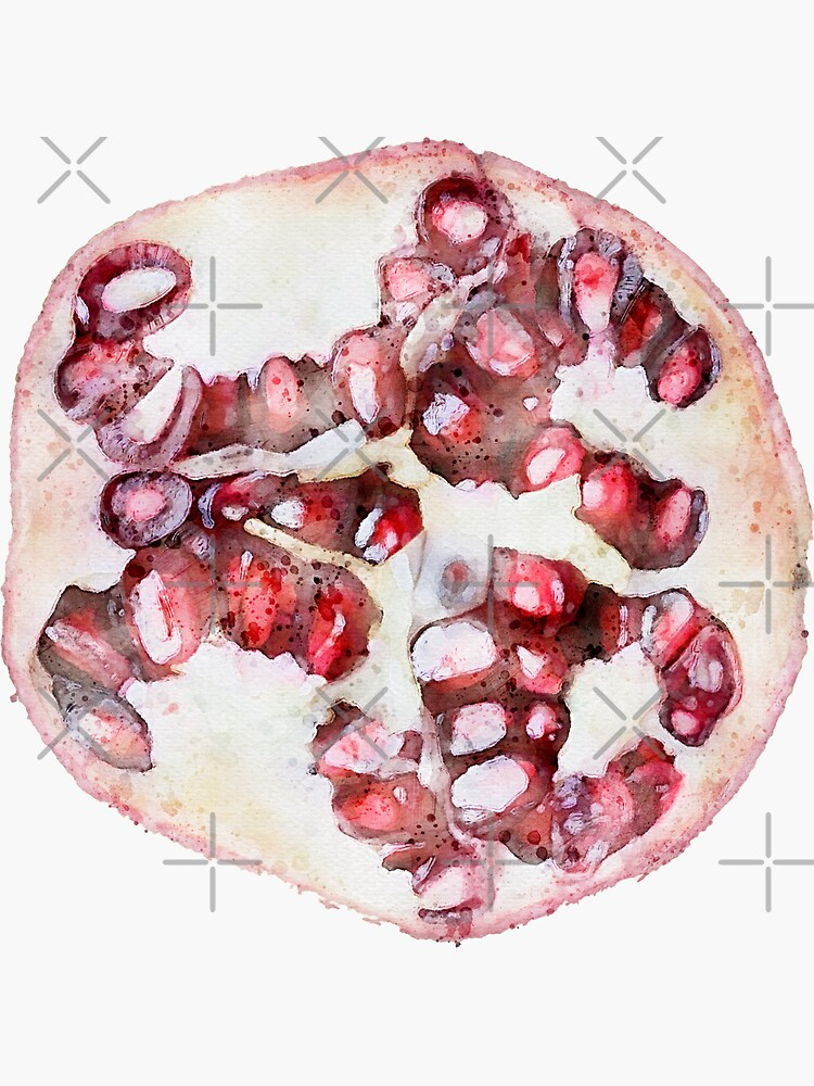 Colorful Pink Watercolor Watercolour Pomegranate Slice Fruit Aesthetic by Verthalies