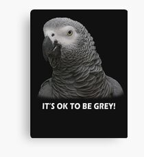 IT'S OK TO BE GREY Canvas Print