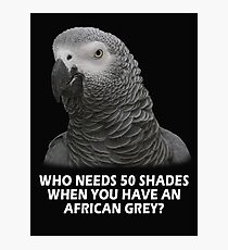 Shades of Grey Photographic Print