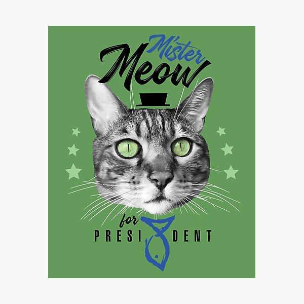 Mister Meow for president, chat en cravate avec chapeau, noir et blanc, fond vert Impression photo