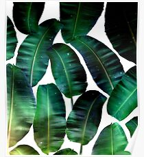 Cosmic Banana Leaves #redbubble #lifestyle Poster