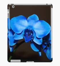 Swaying to the Blues iPad Case/Skin