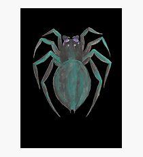 Die Spinne Photographic Print